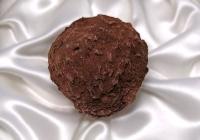 В Эквадоре выставили на продажу самый дорогой черный шоколад в мире